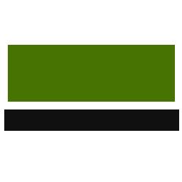 Czar Investments Logo